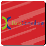 Teambuilding Events for Data Consulting
